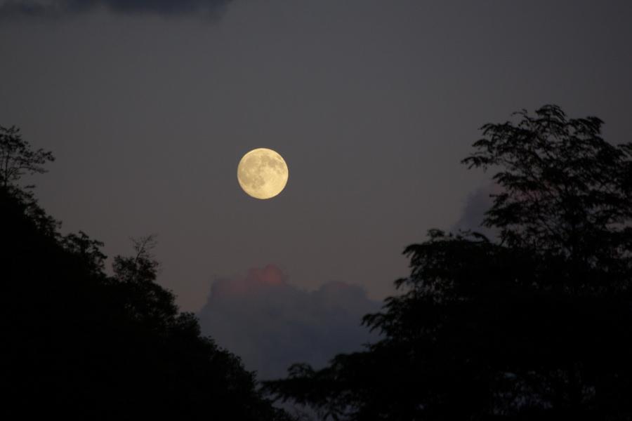 朝日で月を見た。_e0051186_230960.jpg