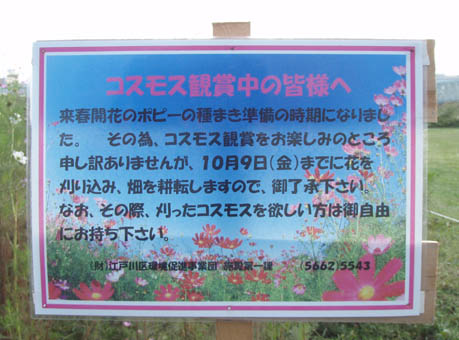 f0201014_1373889.jpg