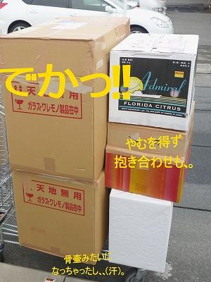 b0181615_022993.jpg