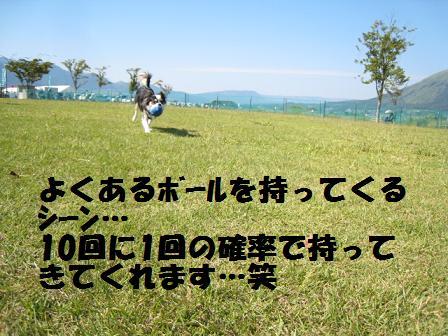 f0188830_21104242.jpg