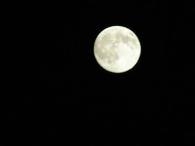 お月見_d0127634_19202284.jpg