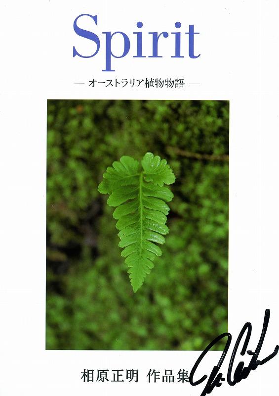 f0050534_17394864.jpg