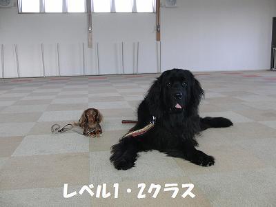 f0186040_2038434.jpg