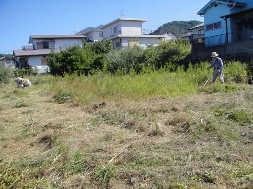 みさき公園住宅地の草刈り事業_c0108460_18531100.jpg