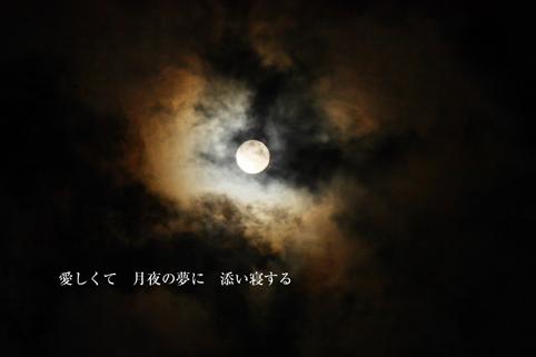 b0146278_22442192.jpg