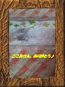 a0130282_16185264.jpg