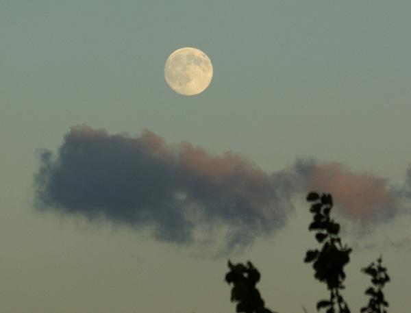 十五夜お月さま&収穫の秋に感謝♪_a0136293_13121416.jpg
