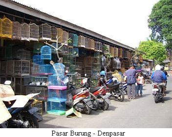バリ島2009 - 野暮用@Denpasar_a0057402_19205527.jpg