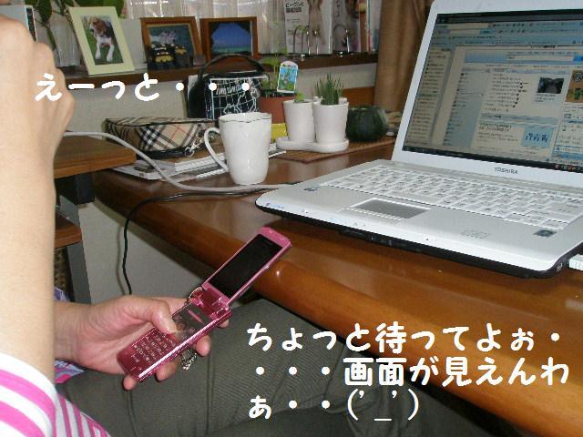 c0205806_181553.jpg