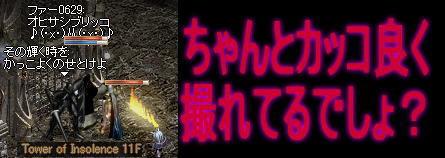 f0072010_3501637.jpg