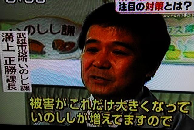 武雄市いのしし課_d0047811_18124032.jpg