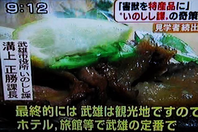 武雄市いのしし課_d0047811_18141453.jpg