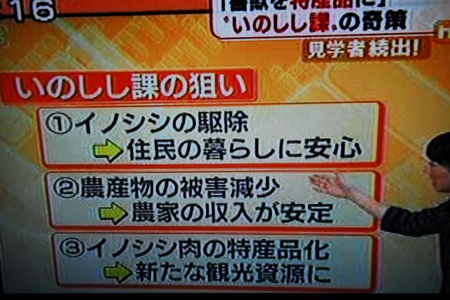 武雄市いのしし課_d0047811_18153154.jpg