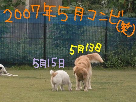 f0176830_21433957.jpg