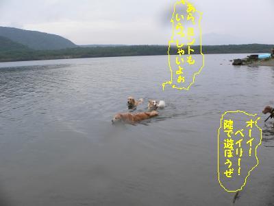 f0118135_17304359.jpg