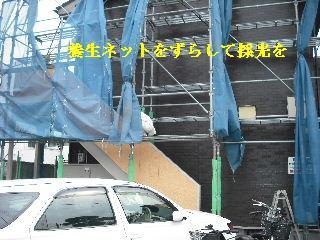 塗装工事最終日_f0031037_20553377.jpg