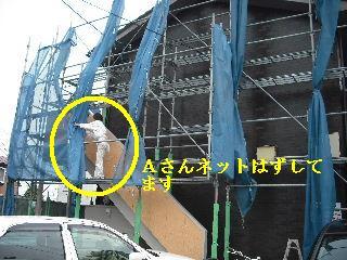 塗装工事最終日_f0031037_2055427.jpg