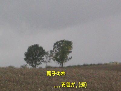 b0105157_1983226.jpg