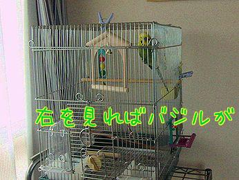 f0196665_0181740.jpg