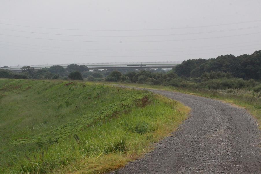 小雨降る川原の土手から。。。_a0107574_7523051.jpg