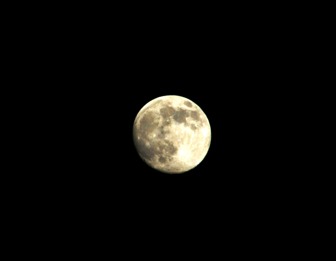 十六夜_e0094102_13224897.jpg