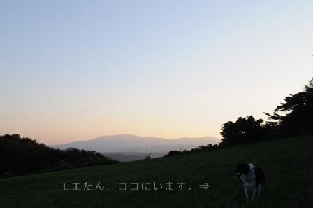 b0119620_13245867.jpg