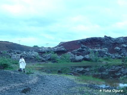 原田知世アイスランド・レコーディング、その7:鳥に導かれた撮影地へ_c0003620_22535718.jpg
