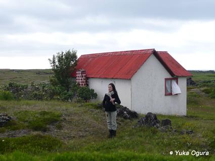 原田知世アイスランド・レコーディング、その7:鳥に導かれた撮影地へ_c0003620_22571018.jpg