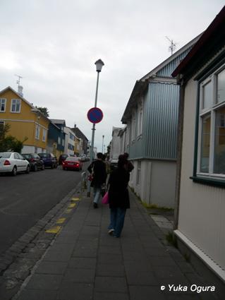原田知世アイスランド・レコーディング、その7:鳥に導かれた撮影地へ_c0003620_2331640.jpg
