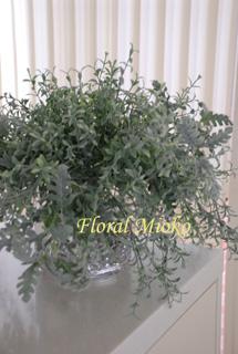 グリーン3種&白い花のアレンジ_b0151059_15344034.jpg