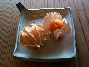 オレンジチェリー???_b0120877_926462.jpg