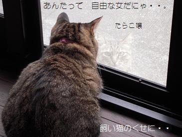 c0139488_102099.jpg