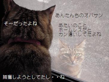 c0139488_1022527.jpg