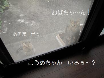 c0139488_1202168.jpg