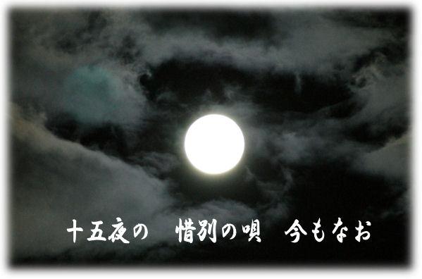 e0157999_053238.jpg