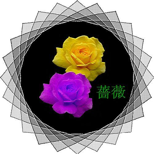d0048312_21412417.jpg