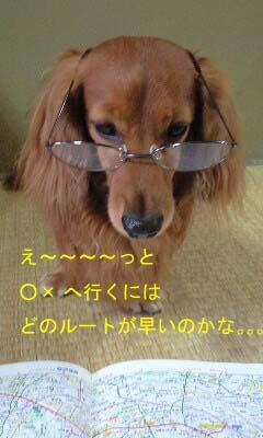 b0058213_1556969.jpg