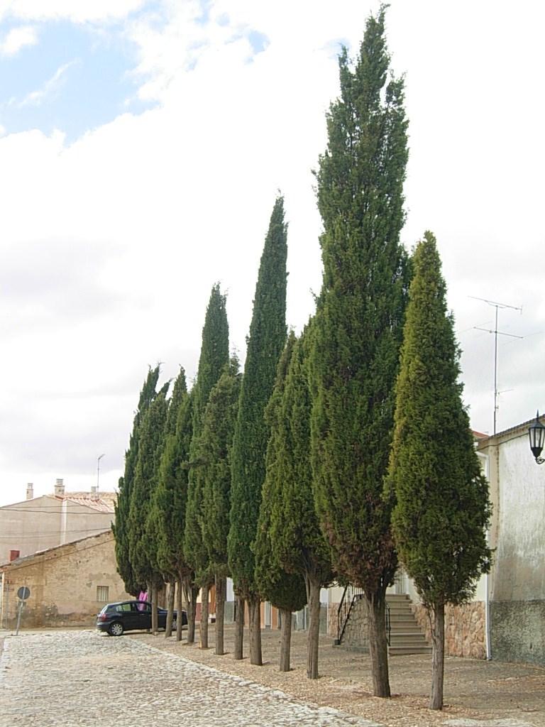 カスティーリャの村々_c0213220_3456100.jpg