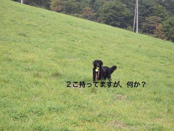b0091153_16505393.jpg
