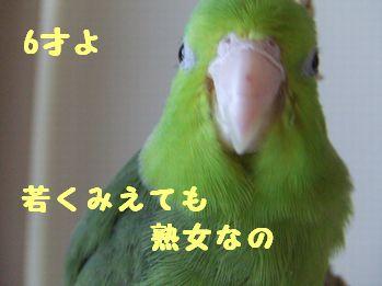 b0082757_1403548.jpg