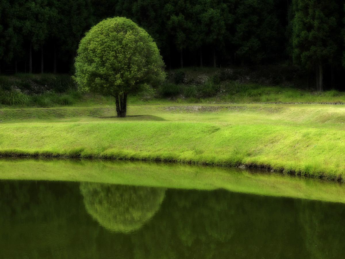 奈良 オフ会  室生山上公園芸術の森_f0021869_23153124.jpg