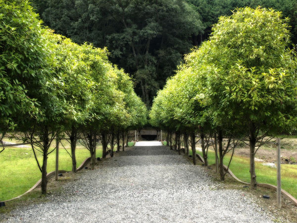 奈良 オフ会  室生山上公園芸術の森_f0021869_23301056.jpg