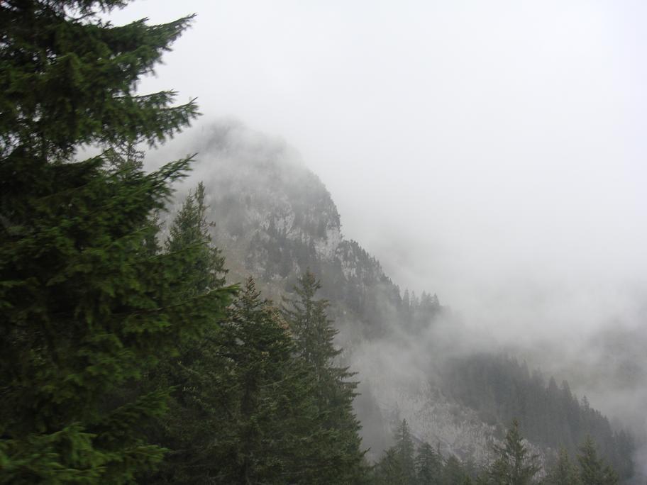 山の Mr. up to Pilatus Mt._e0097491_2351194.jpg
