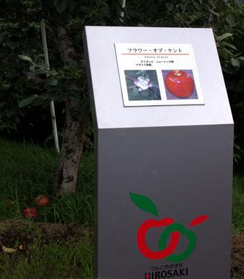実りの秋。弘前市りんご公園♪_a0136293_13281420.jpg