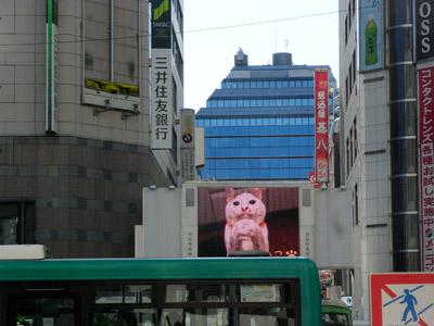 渋谷中央街のビジョンNEWバージョン!【10/16更新】_a0028451_1455222.jpg