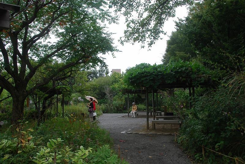 向島百花園と浅草、その他_c0187781_234332.jpg