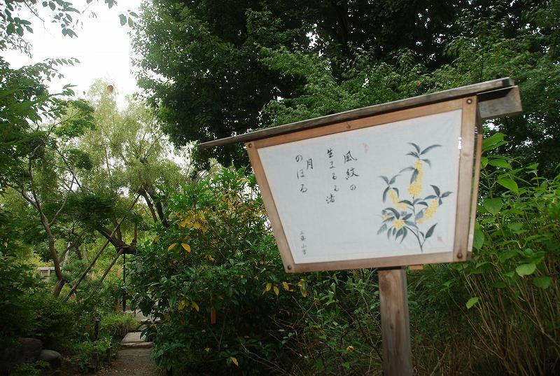 向島百花園と浅草、その他_c0187781_2347036.jpg