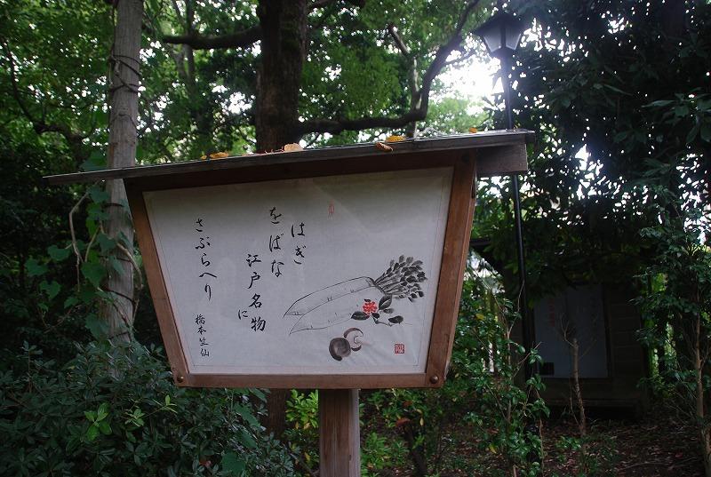 向島百花園と浅草、その他_c0187781_23473233.jpg