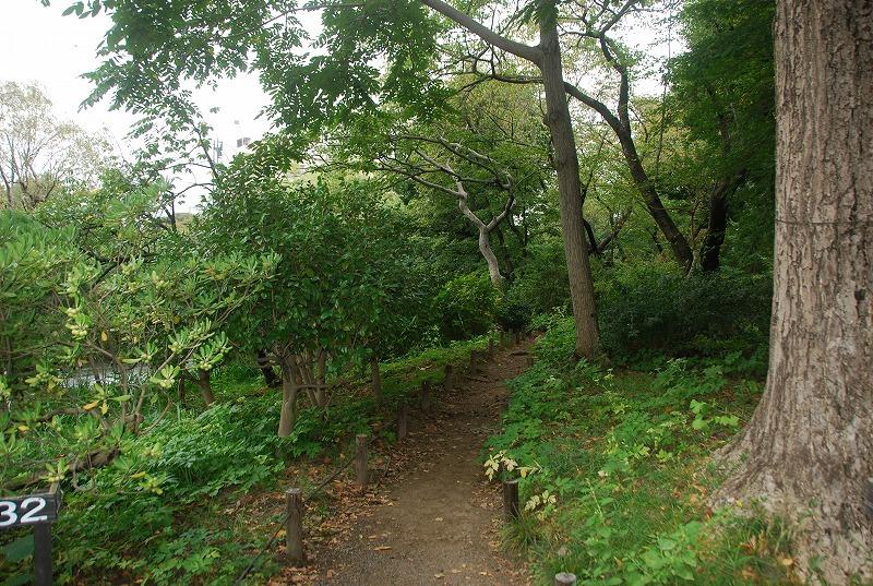 向島百花園と浅草、その他_c0187781_2348775.jpg