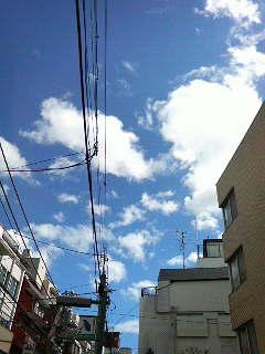 青空_a0075684_13434388.jpg